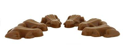 chocolade kikkers